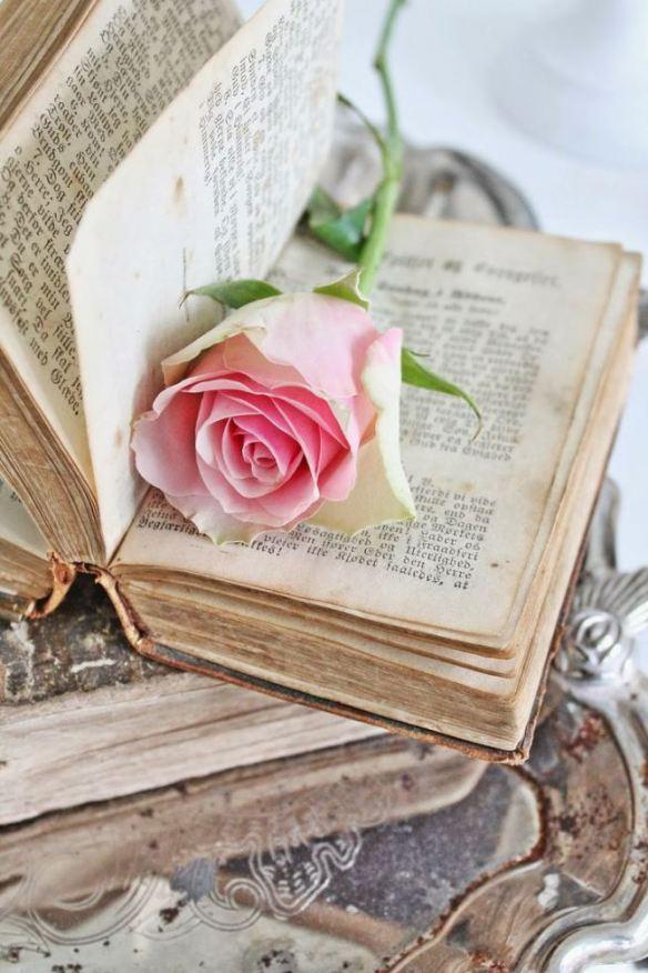 livro-rosa